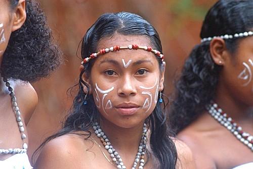 Le g nocide colonial fran ais des peuples am rindiens cara bes des petites antilles de 1625 1660 - Promatect l500 coupe feu ...